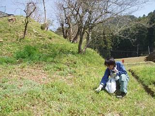 09warabi.jpg