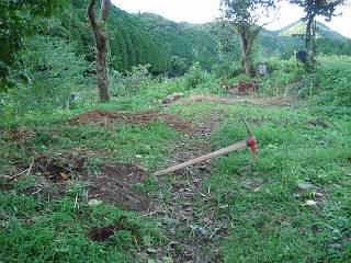 20080919koya015.jpg